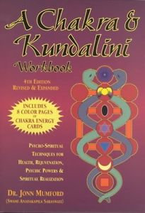 A Chakra & Kundalini Workbook: Psycho-Spiritu