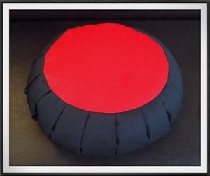 Fast Ship Deluxe Buckwheat Hulls Zafu Meditation Cushion Yoga Mat Pillow