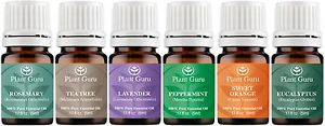 Essential Oil Set - 6 Pack - 100% Pure Natural Therapeutic Grade Oils Lot 5 ml.